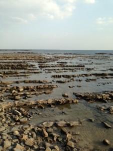 青島神社海岸